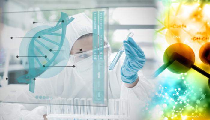 Industrie pharmaceutique et Biotechnologies